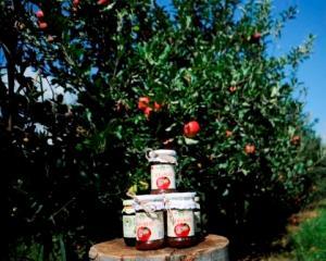 DIRECT DE LA FERMA-gem de mere