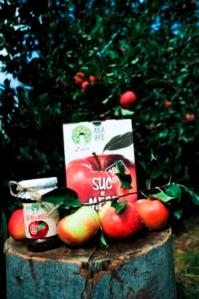 DIRECT DE LA FERMA-suc de mere
