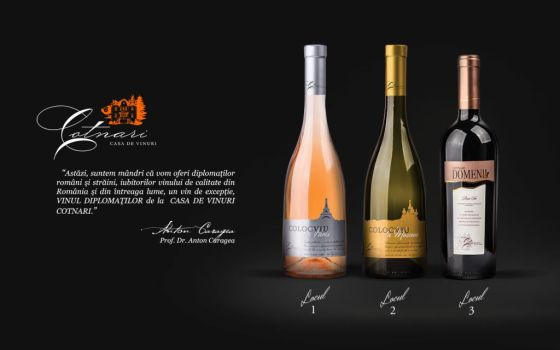 Vinul Diplomatilor-web