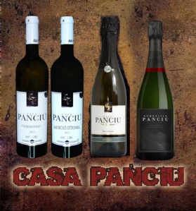 CASA PANCIU logo
