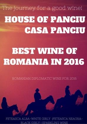 Cautarea unui vin bun merita-webs