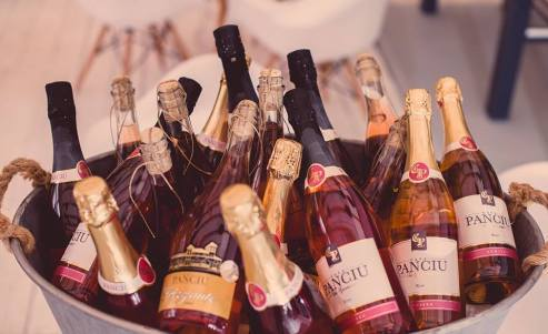 CASA PANCIU-inceputul petrecerii